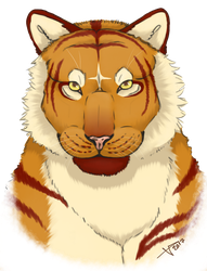 Head of the Tiger by JukkaThePalm
