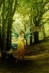 The Path Of Fairies by maiarcita