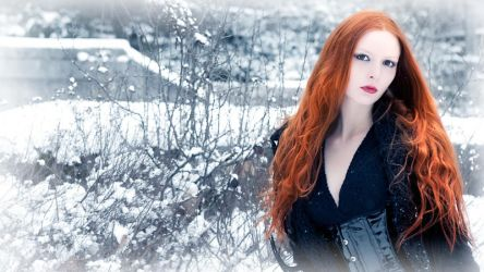 Shades of Winter III by Nightshadow-PhotoArt