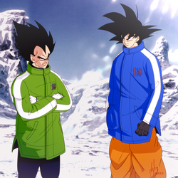 Goku And Vegeta by iAbokai