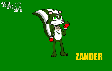 Zander the Skunk (2018 version) by AcidSkunkWolf