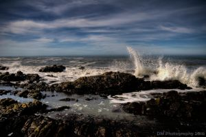Pebble Beach, Revisited 06 by dylanmeadows