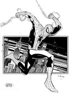 Spider-man by johnnymorbius