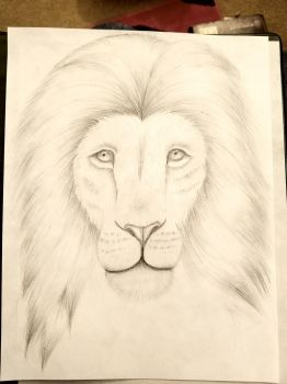 Lion by SamanBrosefineIzzle