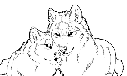 Free wolf lineart by Edeneue