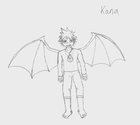 Fire Emblem - Kana with Wings by Laharl234