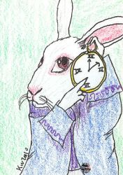 White Rabbit by melydia