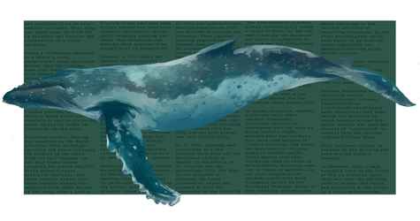 Humpback whale II by LeiaSioux