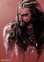 Thorin Oakenshield by evankart