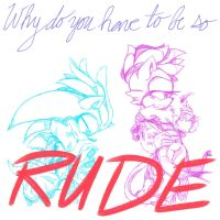 Why Do you have to be so Rude? by RichHoboM3