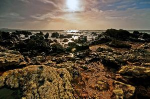 Into the Sun by taffmeister