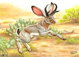 Jackalope commission by Dustmeat