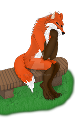 Fox by Wol4ica