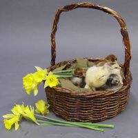 Easter stock 4 by InKi-Stock