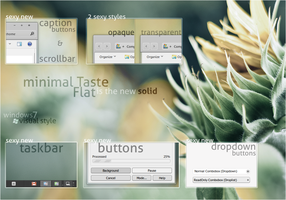 Minimal Taste Flat for Windows7 by dpcdpc11