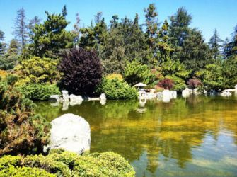Waterscape Greenery 2 by TheMysticFlight
