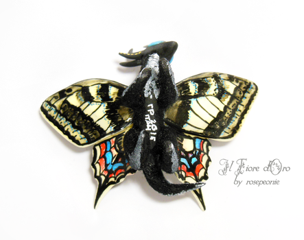Robin, Swallowtail Butterfly dragon 3 by rosepeonie