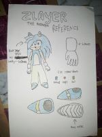 Zlayer the hedgehog REF and new design by BlayLi155