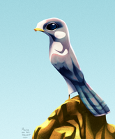 Daily Design: Peregrine Falcon by sketchinthoughts