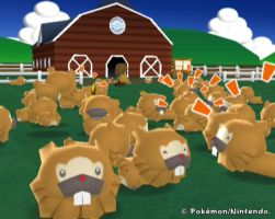 Pokemon Ranch: Bidoof Frenzy