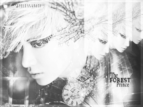 The Forest Prince by HapIce