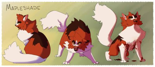 Mapleshade-3 Stages by Simatra