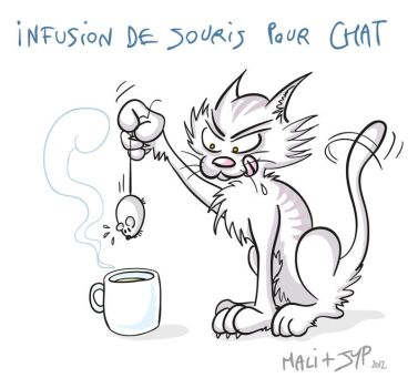 Cat's infusion by jypdesign