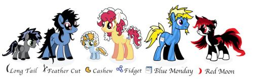 My Little Pony (Made up Characters) by shastasnow