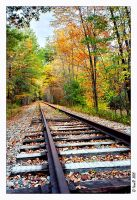 Train track by WaitingForTheWorms