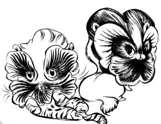 Pansy Kittens by Pocketowl