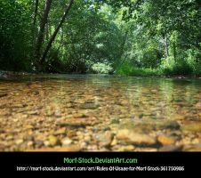 Creek 2 by Morf-stock