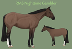RMS Nighttime Gambler by theRyanna