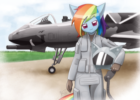 Commission Rainbow Dash and A-164 by HowXu