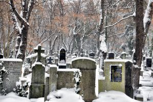 Winter cemetery III by tomsumartin