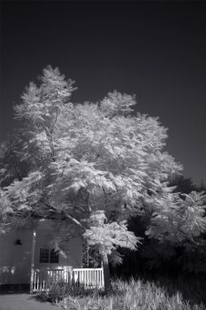 IR LCR23 by RBcolor
