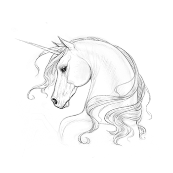 Unicorn Horse Head Pony Lineart Thing by Naimly