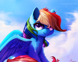 Rainbow Dash by Miokomata
