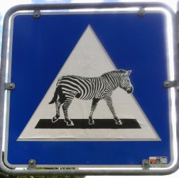 Zebra crossing by sykonurse