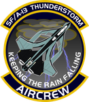 SFA-13 Thunderstorm Aircrew Insignia by viperaviator