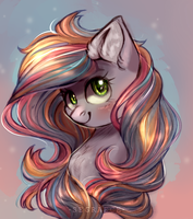 Sundance Melody by Segraece