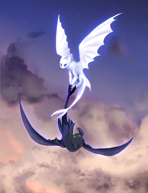 night and light fury by kilIerqueen