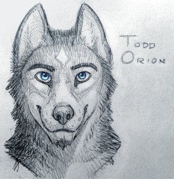 Todd Orion by Maximum993