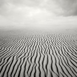 Dune by MarcinFlis
