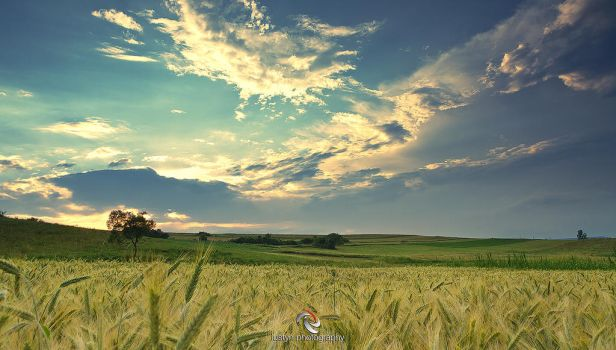 Sky on the country by iustyn