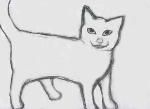 Cat Sketch by Slaver12