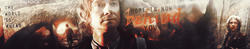 The Hobbit - Banner by EmeliaJane