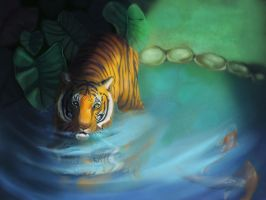 Tiger In A Koi Pond by Followthepaws