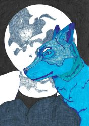 Blue Wolf by MagsGallery