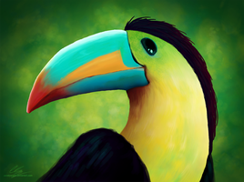 Profile of toucan by UszatyArbuz