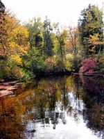 Fall Pictures 3 by FairieGoodMother